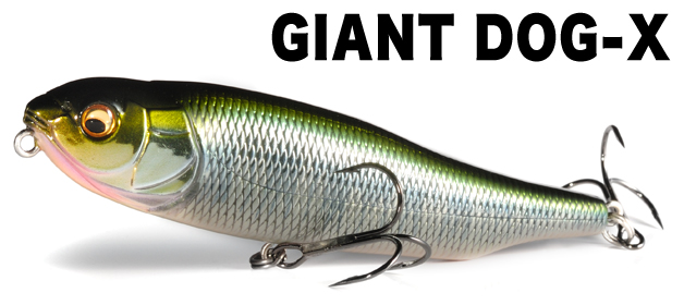 giantdogx_MAIN.jpg