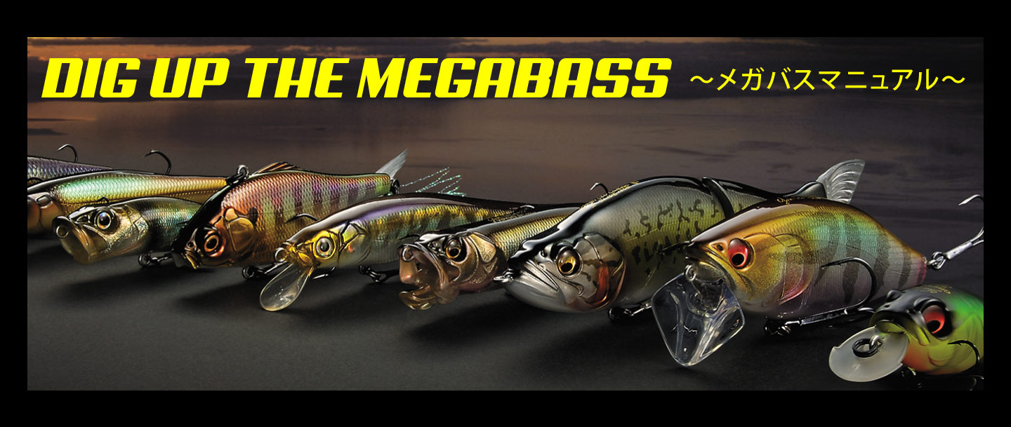 DIG UP THE MEGABASS
