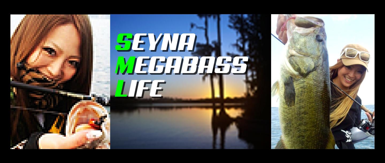 SEYNA MEGABASS LIFE