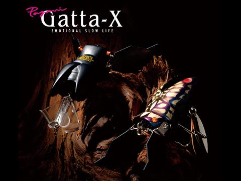Gatta-X