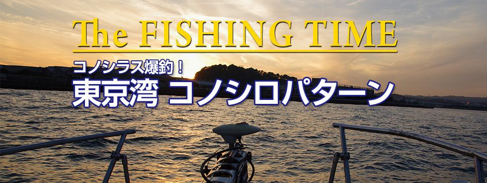 コノシラス爆釣!東京湾コノシロパターン