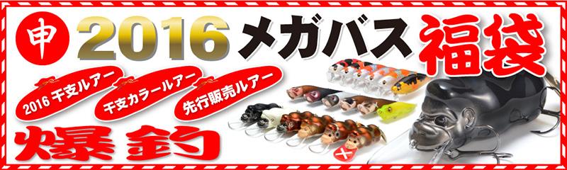 2016_fukubukuro2