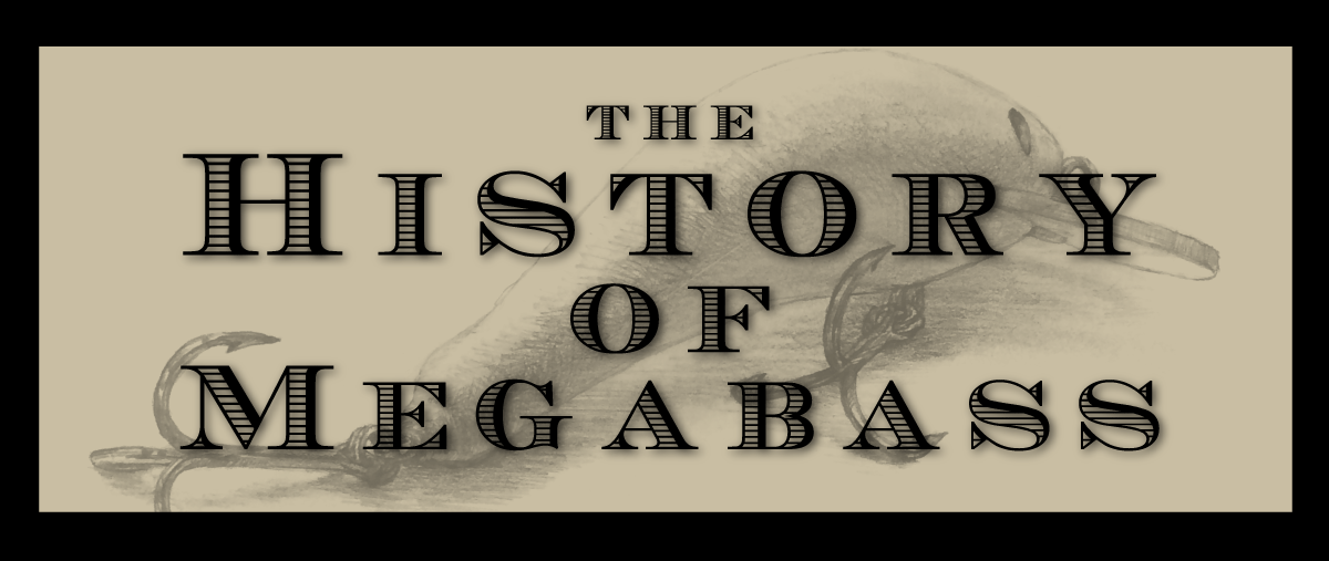THE HISTORY Of MEGABASS
