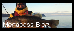 MEGABASS BLOG