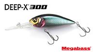 DEEP-X300
