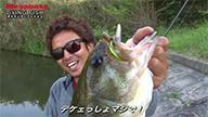 DYING FISH