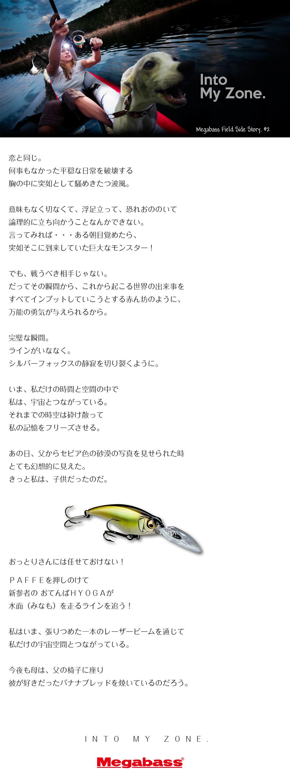 story_2a2