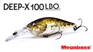 DEEP-X100 LBO