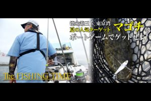 徳永兼三×東京湾・夏の人気ターゲット・マゴチをボートゲームでゲットせよ!