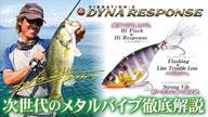 VIBRATION-X DYNA RESPONSE